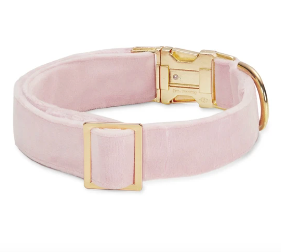 Blush Pink Velvet Dog Collar