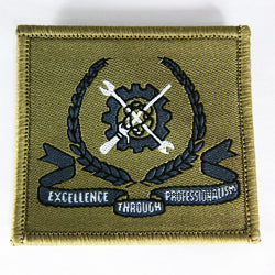 SAF - Patch MES Excellence through Professionalism