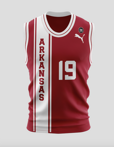 Team Arkansas Official Jersey