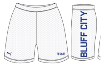 Bluff City (Memphis) - Official Shorts