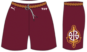 Gael Nation (Iona Alumni) - Official Shorts
