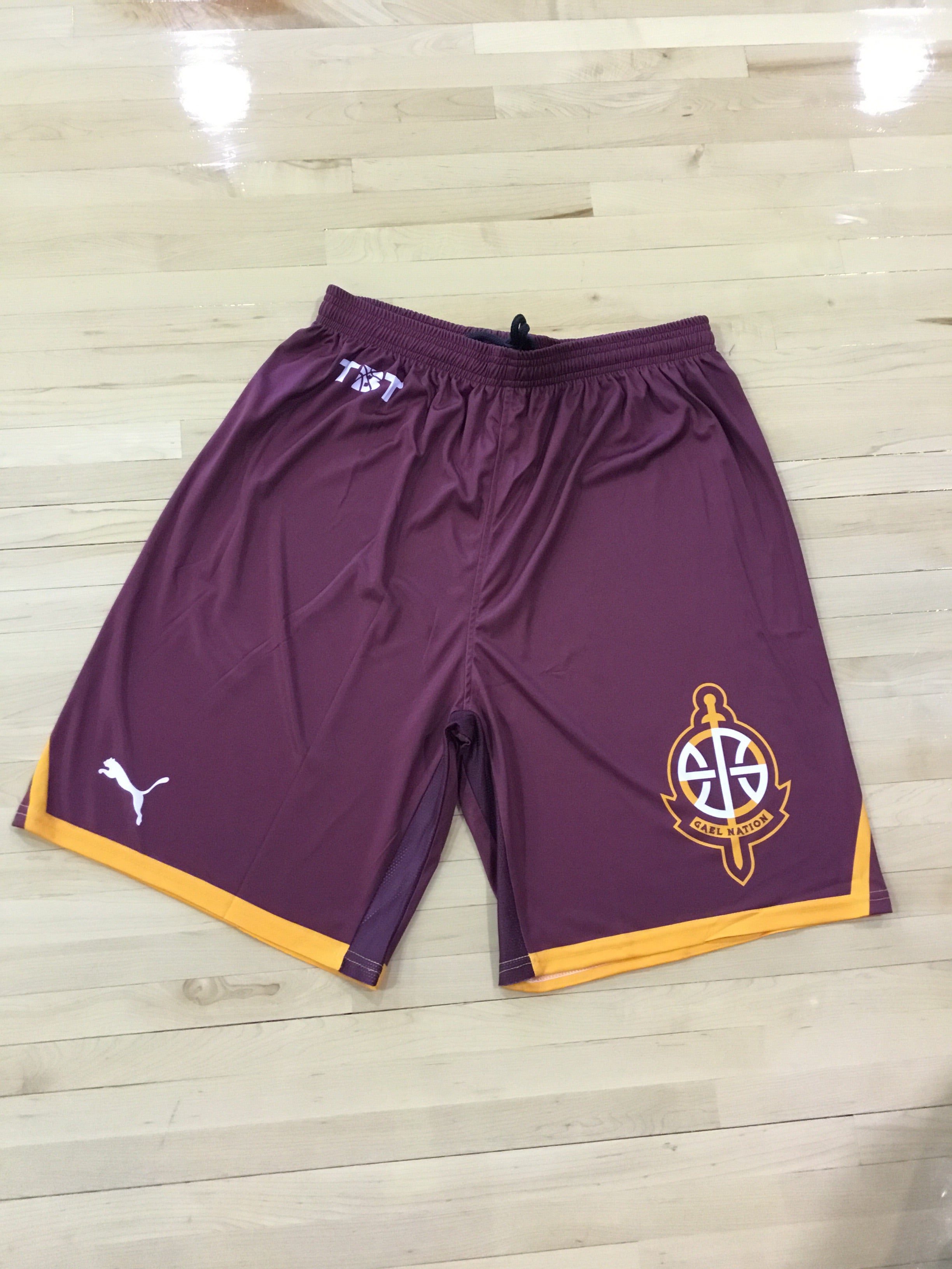 Gaelnation - 2018 Official Team Shorts (Red)