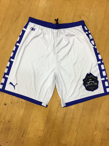 Hall In (Seton Hall Alumni) - 2018 Official Team Shorts