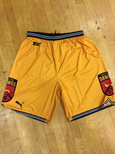 Hilltop Dawgs (UMBC Alumni) - 2018 Official Team Shorts
