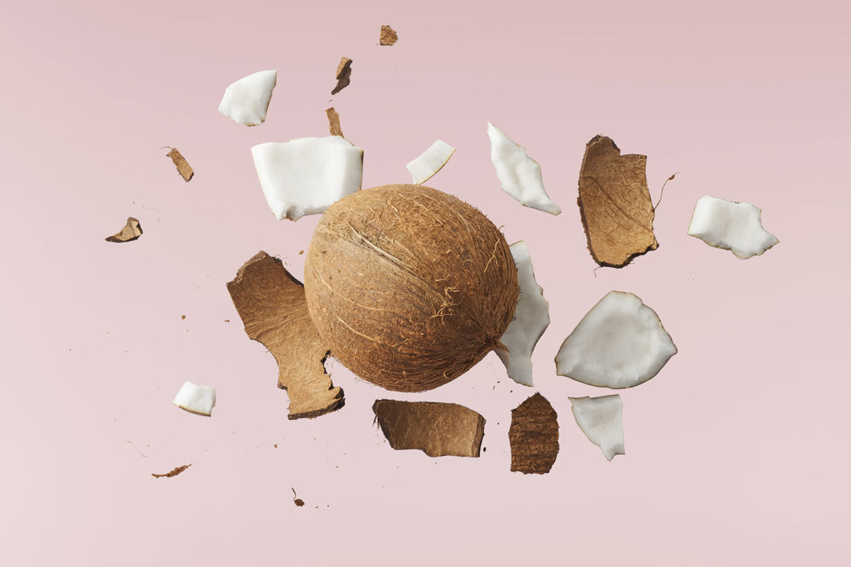 Fresh ripe coconut isolated on pink background By Agave Studio