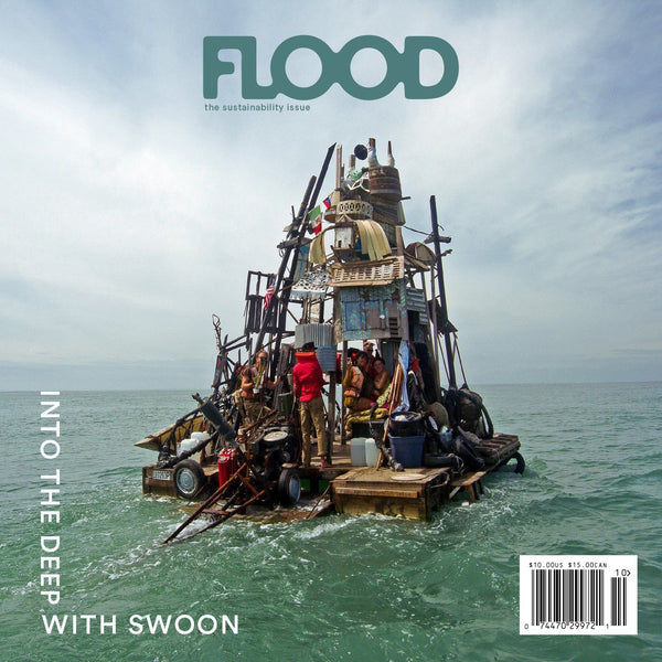 FLOOD 11: The Sustainability Issue