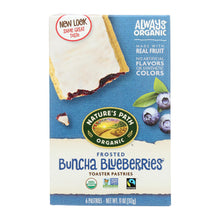Nature's Path Organic Frosted Toaster Pastries - Buncha Blueberries - Case Of 12 - 11 Oz.