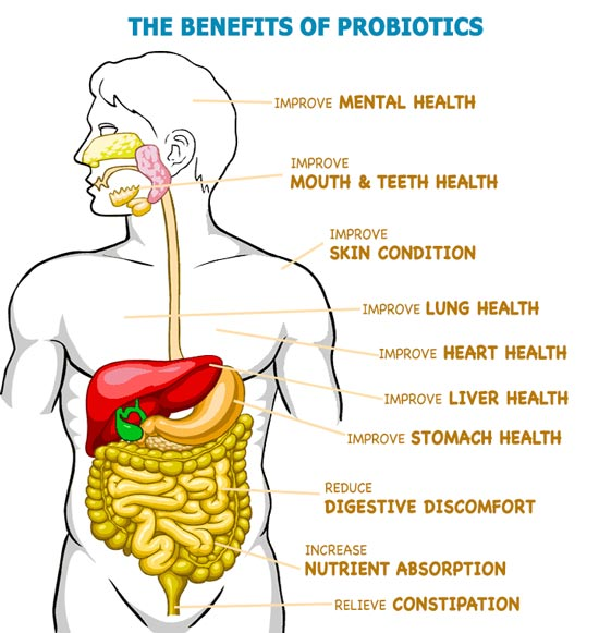 Probiotic10 with Maktrek