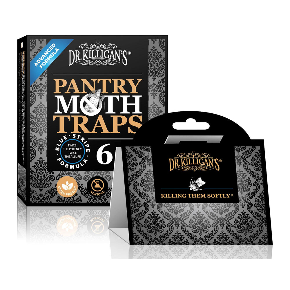 Premium Pantry Moth Traps | 6 Pack - Dr. Killigan's