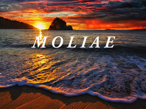 MOLIAE Production by Nichel Anderson