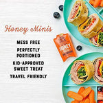 Nature Nate's Raw and Unfiltered Honey Minis Packets Single Serve - Slushlyo