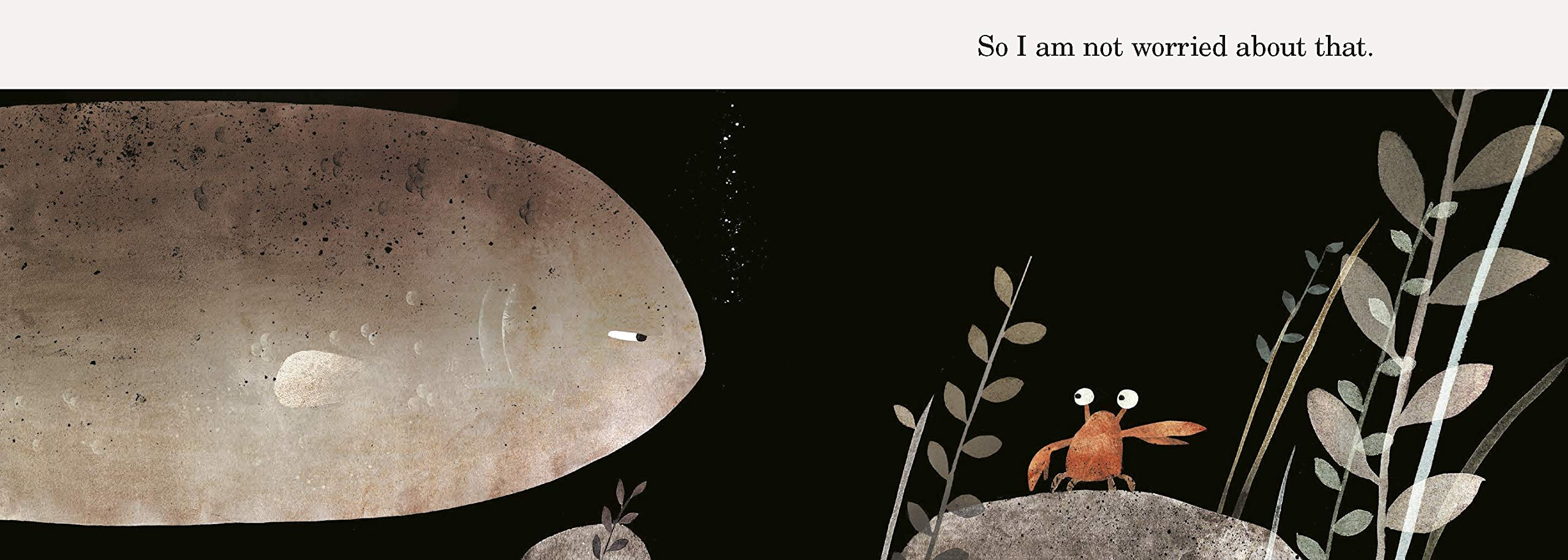 Jon Klassen: That's Not My Hat