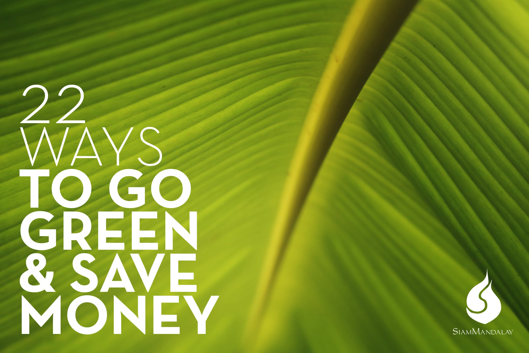 22 Ways To Green And Save