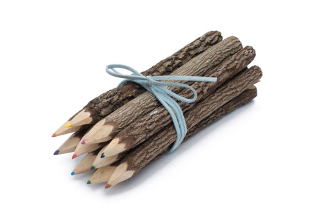"Bunch of Branch Twig Color Pencils Set of 10 size 7"" with Blue Wrap"