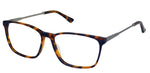 Perry Ellis 434 in Tort.Gun/Black/Gun/Aqua Crystal