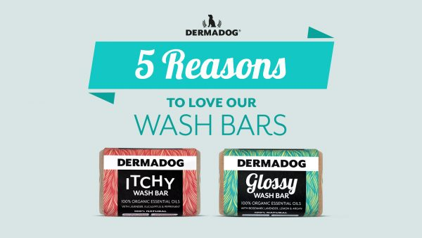 DermaDog Wash Bars