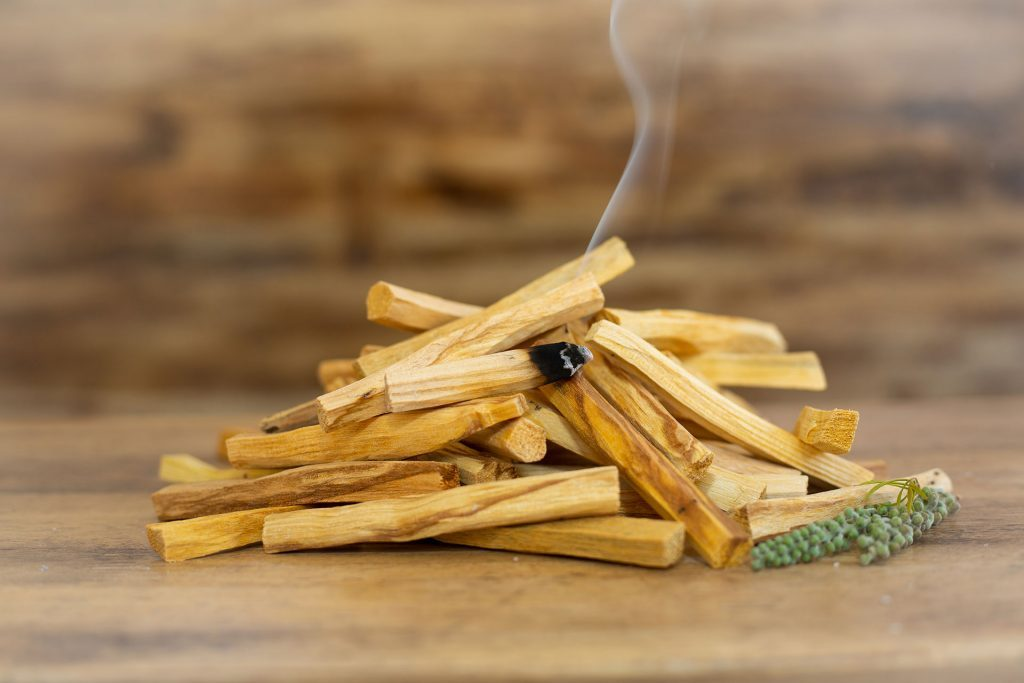 Palo Santo: A Classic Favorite of Ritual Lovers