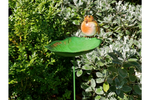 Robin Bird feeder on stake