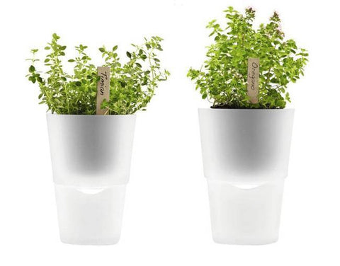 Eva Solo Herb Pot Frosted Glass