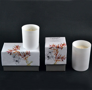 Porcelain Candle Vanilla and Figwood Set of 2