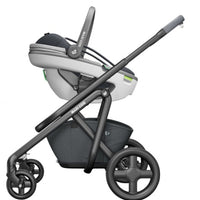 Maxi Cosi Coral Babyschale 2020