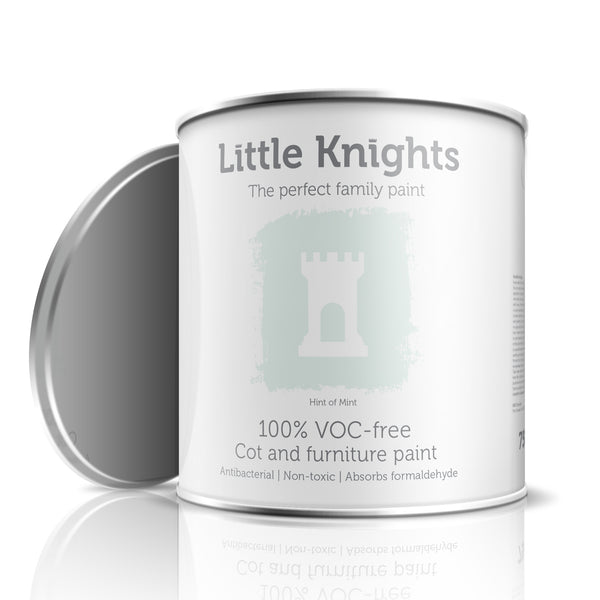 Hint of Mint - Furniture paint - 100ml Sample Tin