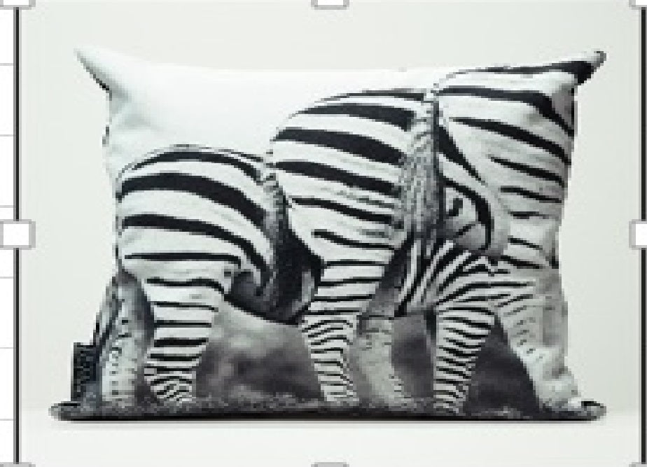 Cushion Cover - Zebra bums