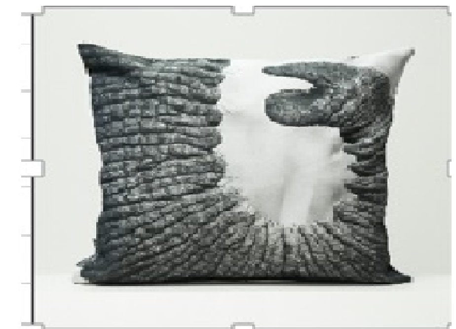 Cushion cover - Elephant trunk