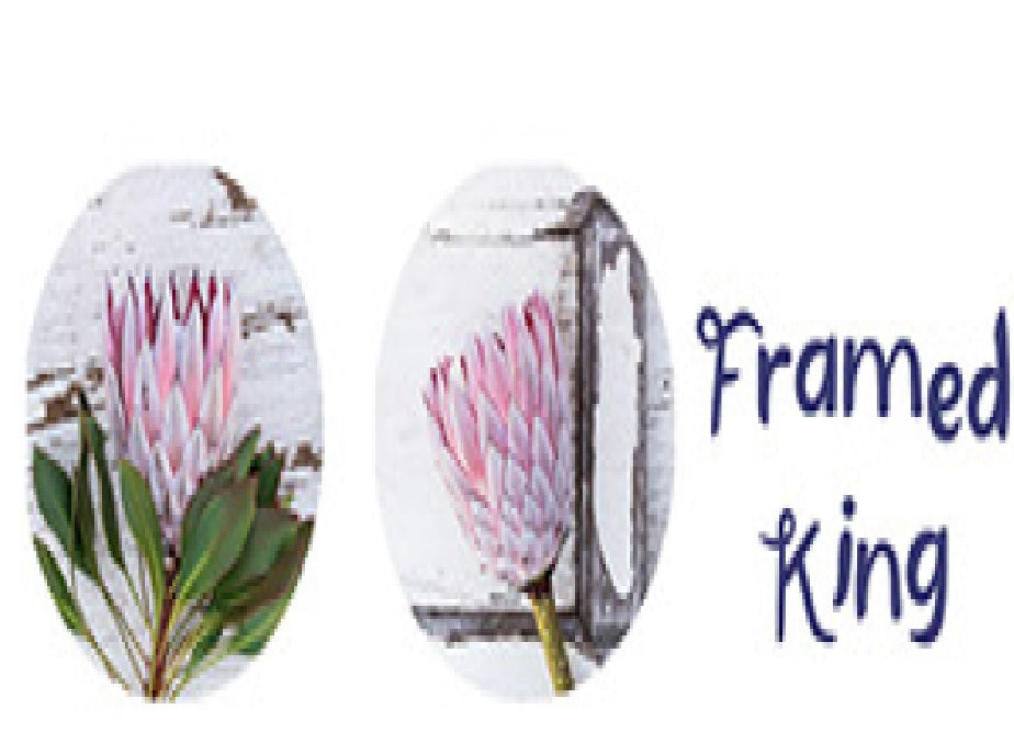 POTSTANDS - Protea Framed King
