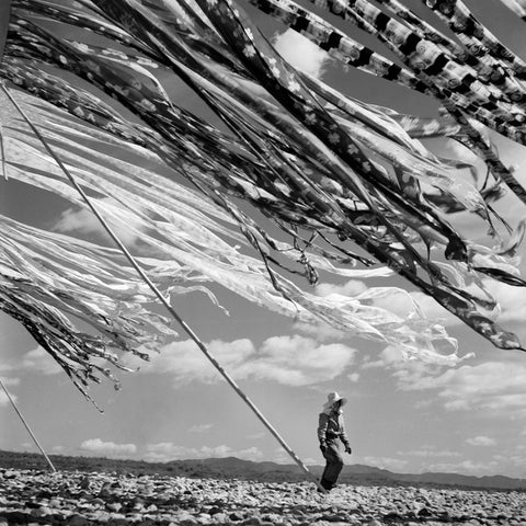 Werner Bischof - Silk drying, Kyoto, Japan 1951
