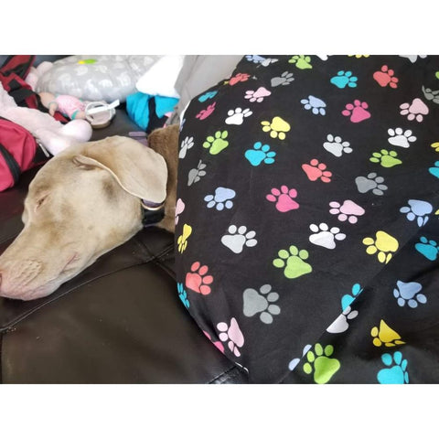 Dog with Weighted blanket