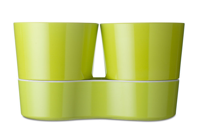 Kruidenpot twin - lime