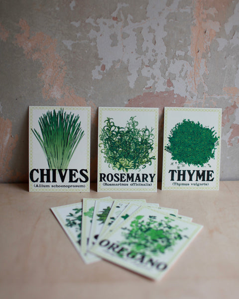Herbs postcard pack