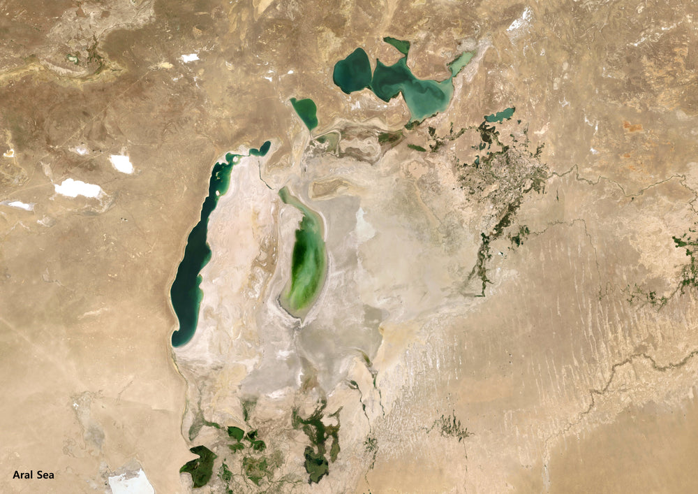 Satellite image of the now dried Aral Sea in Uzbekistan due to cotton farming for the fast fashion industry.