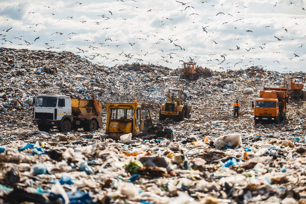 Garbage trucks in a landfill.