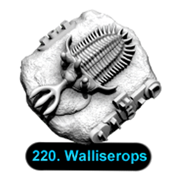 No.220 Walliserops