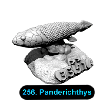No.256 Panderichthys