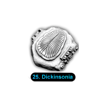 No.025 Dickinsonia