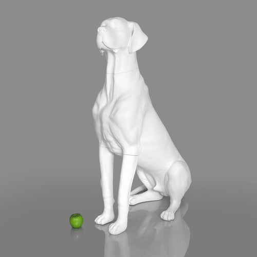 Great Dane Dog Mannequin: Matte White