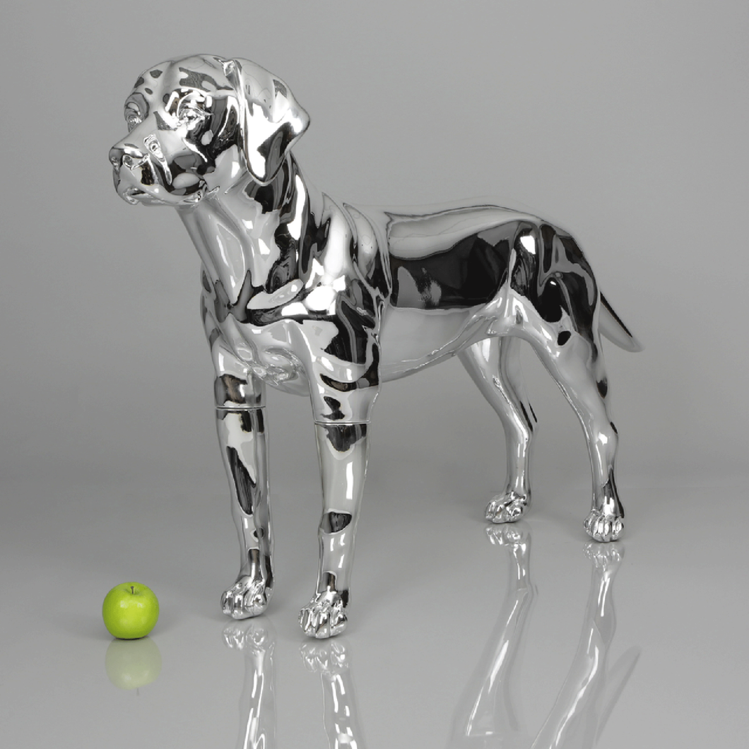 Labrador Dog Mannequin: Chrome