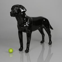 Load image into Gallery viewer, Labrador Dog Mannequin: Matte White or Glossy Black