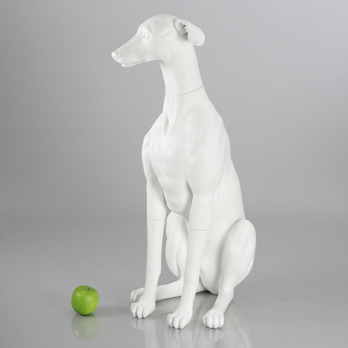 Greyhound Dog Mannequin: Matte White