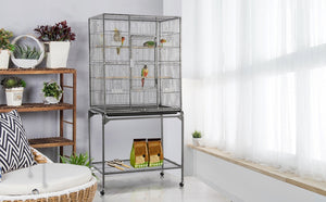 Large Parakeet Cages Buying Guide for Beginners in 2021
