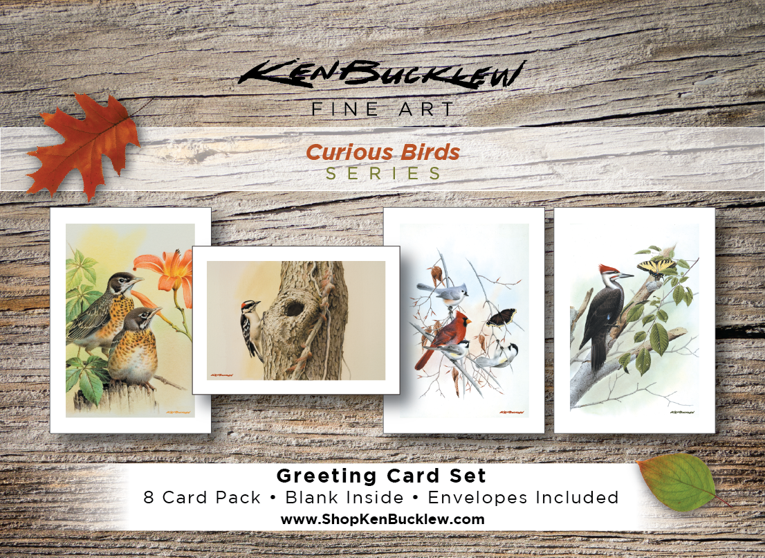 Curious Birds - Greeting Card Set (8 Cards and Envelopes)