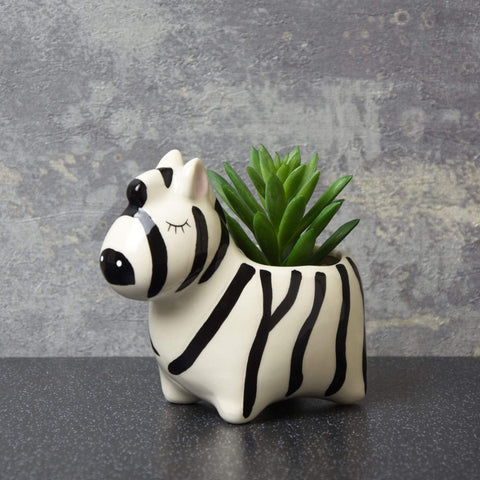 Artificial Plant - In Zebra Pot