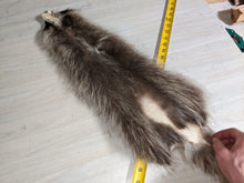 Load image into Gallery viewer, Tanned Raccoon Pelt
