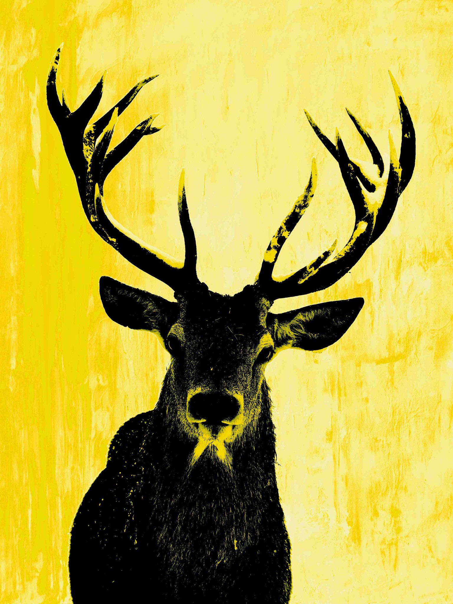 Deer Oh Me, Yellows