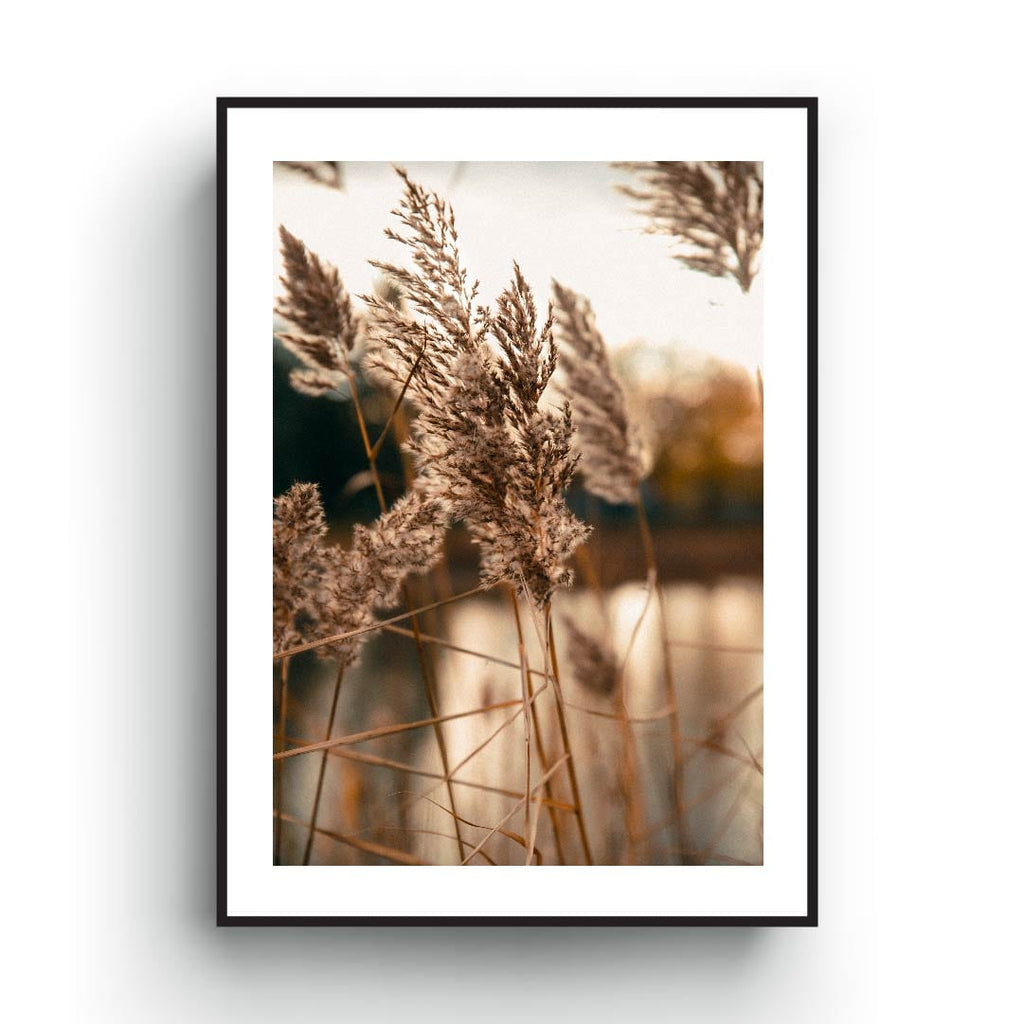 Brown Beige Minimalist Field poster, Nature print Art