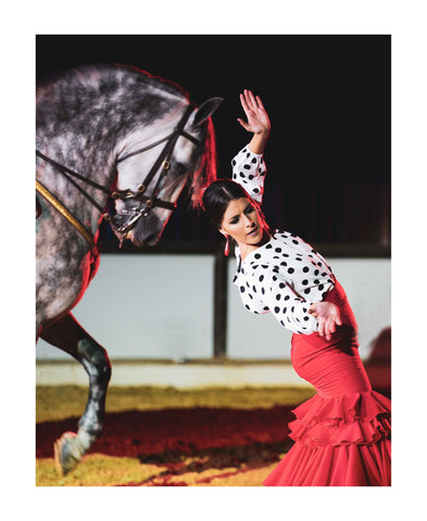 The Spirit of Andalusian Horse IX