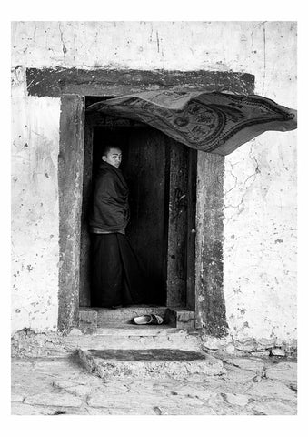 Monks & Monasteries XV
